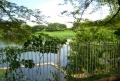 小畔水鳥の郷公園①