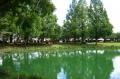 川越水城公園①