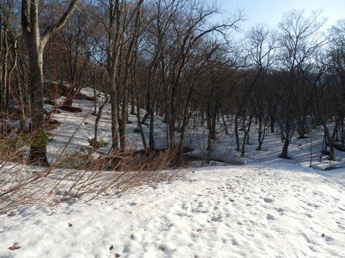 4-19雪状況②