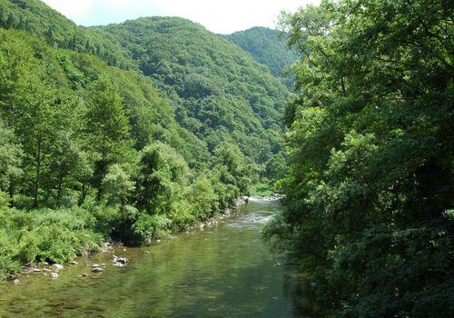赤石渓流 2