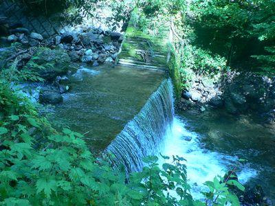 くろくまの滝周辺①