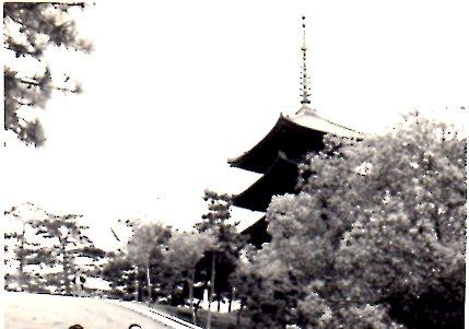 中学校修学旅行・奈良249