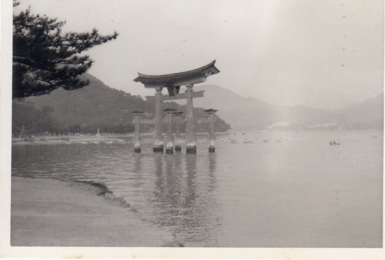 廣島・宮島・1962年(昭和37年4月)311
