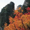小豆島・老杉洞