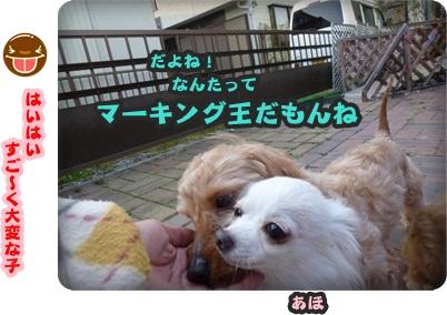 サラと新入生069