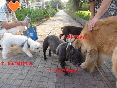 IMG_0603_convert_20140830210749.jpg