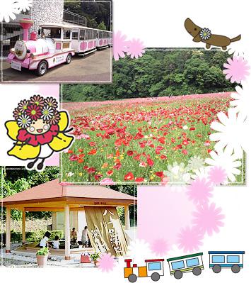 kurihama_img01.jpg