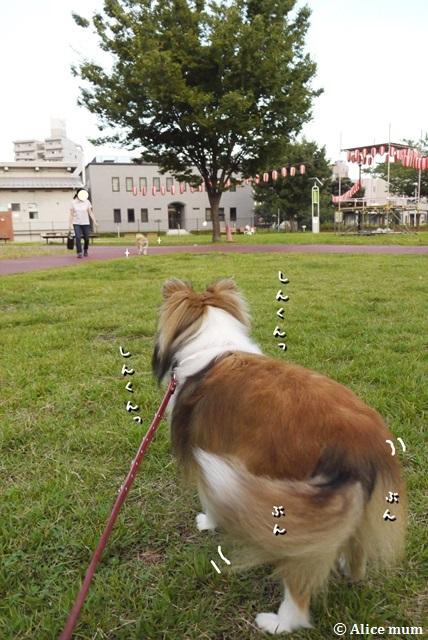 11m_201408190049329b7.jpg