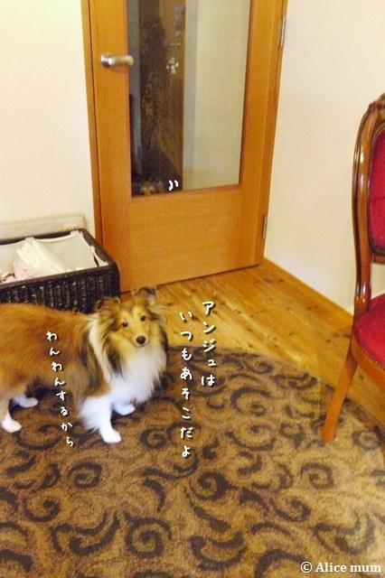 3m_201409112137328e9.jpg