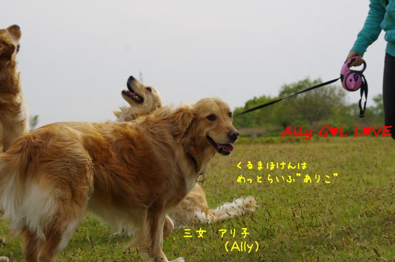 IMGP2839.jpg