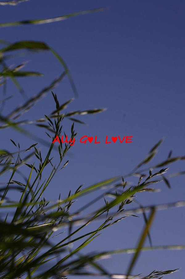 IMGP3538.jpg