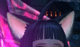 エリーン耳2