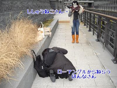 umao shishuueko1