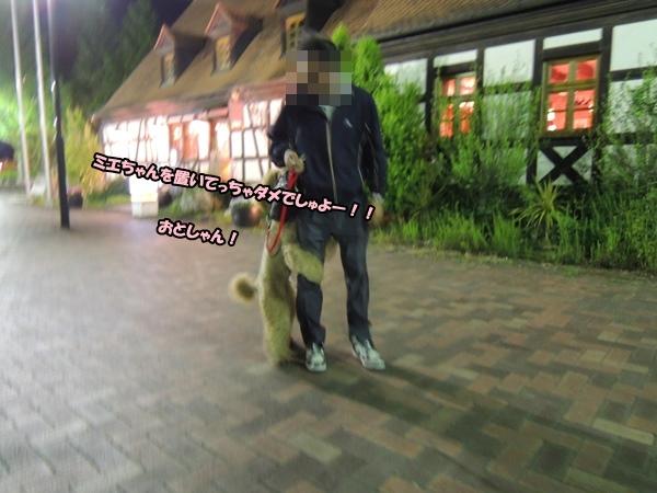 DSCN263520140516.jpg