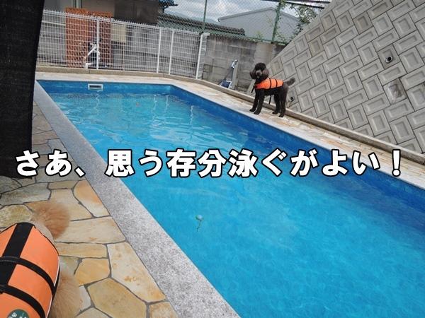 DSCN592620140808.jpg