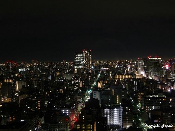 20140204東京夜景(両国第一H