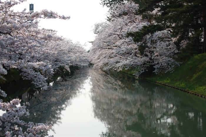 20140426弘前公園外堀