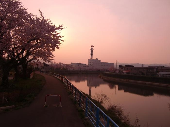 20140427駒込川