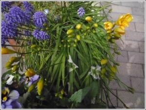 s_garden2014_4.jpg