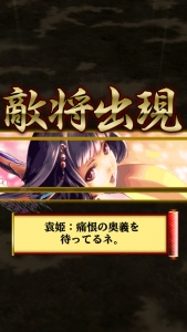 漢3・袁姫