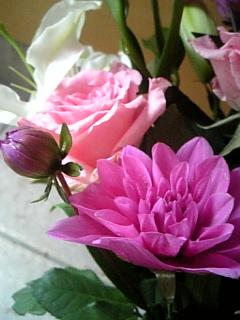 20140301花