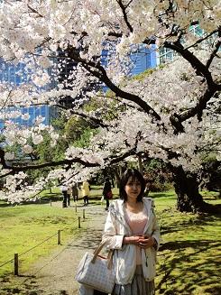 写真 1桜1a