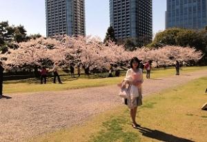 写真 1桜3a