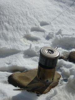 雪とシカ8