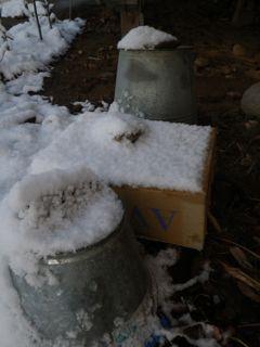 6日の雪4