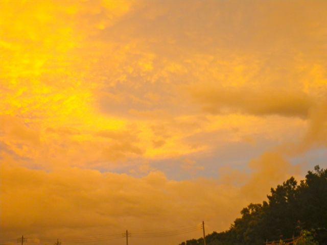 黄色い大気