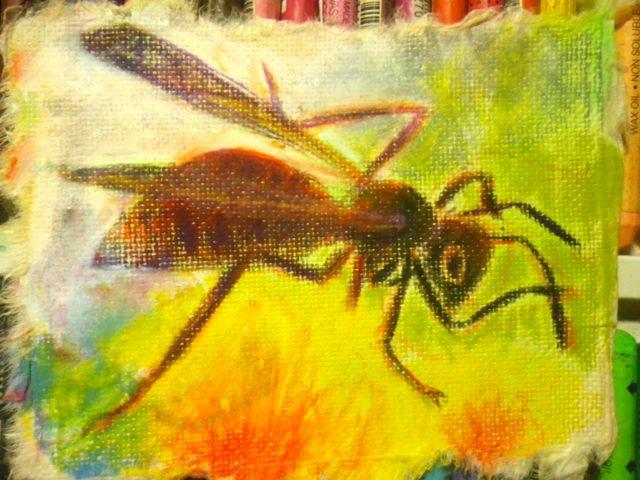 遊びに来たハチ
