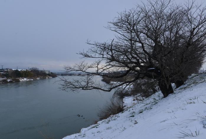 雪の河-1