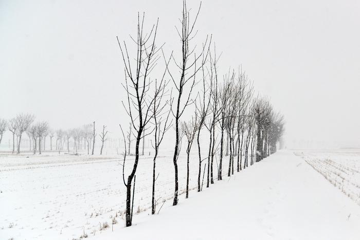 雪は降る-2