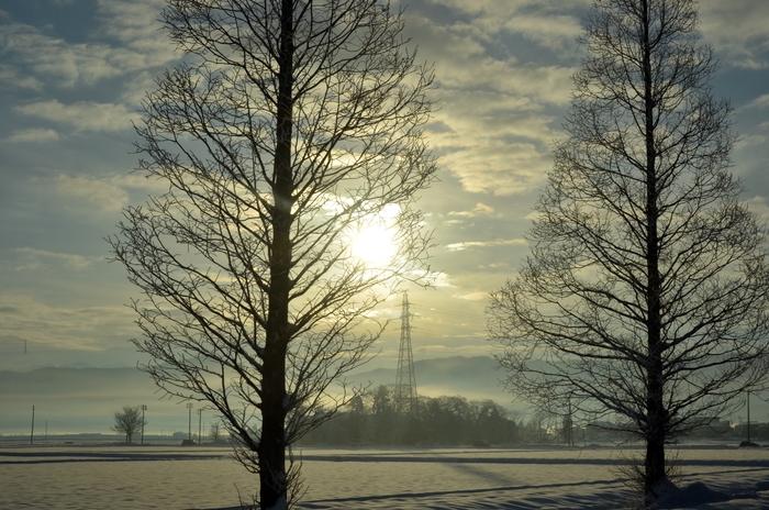 冬の朝陽-1