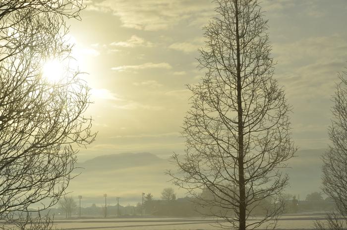 冬の朝陽-2