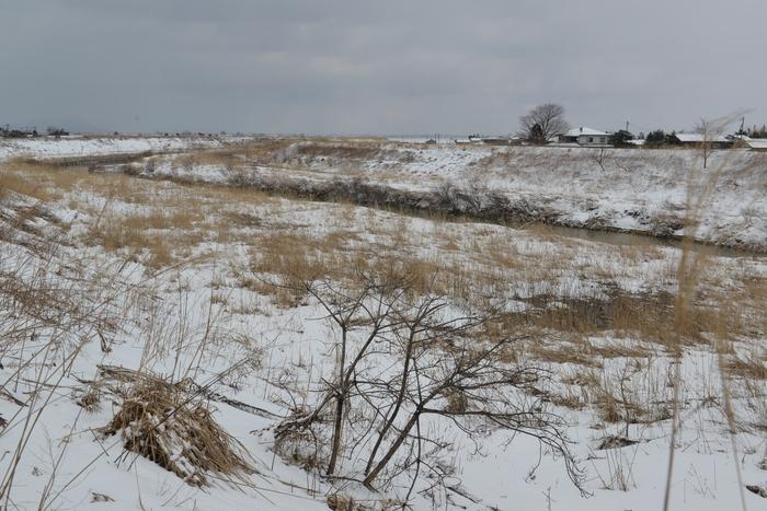 冬の河 Ⅱ-3