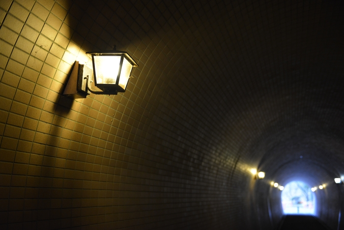 公園のトンネル-2