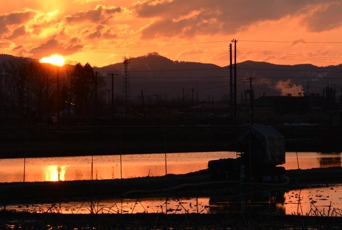 レンコン畑の夕陽 そのⅡ-1