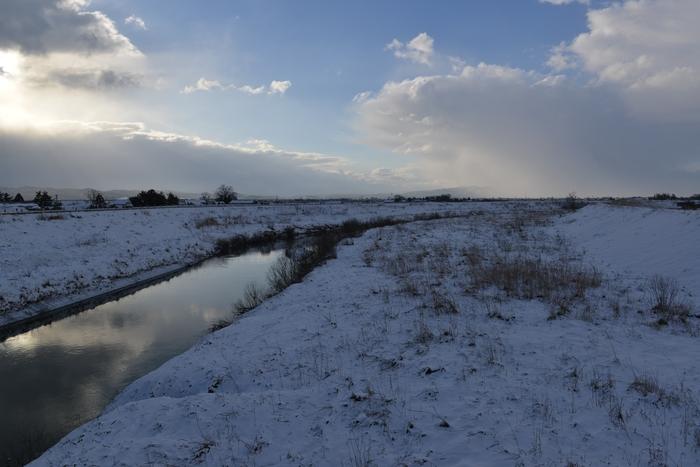 今朝も雪-2