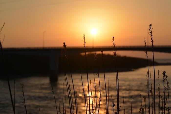 河口の夕陽-2