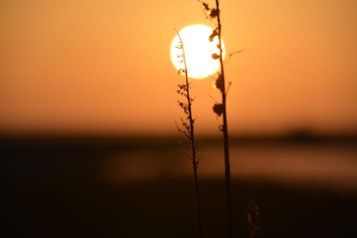 河口の夕陽-3