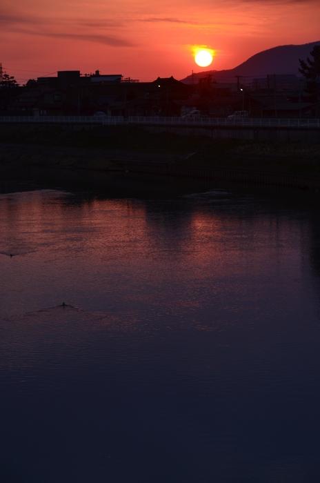 今日の川面の夕陽-4