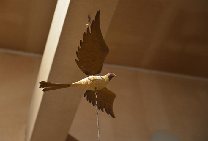 我が家の鳥?-2