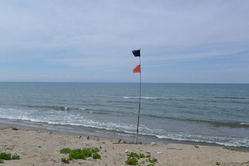 海岸 旗-1