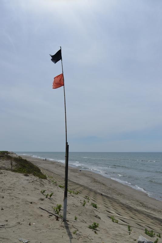 海岸 旗-3