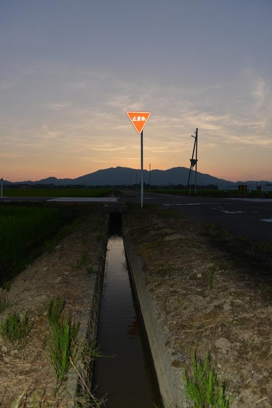 今日の夕暮れ 水田-2