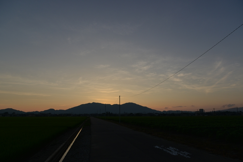 今日の夕暮れ 水田-3