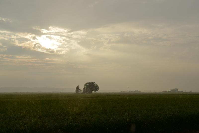 突然の雨 そして虹-1