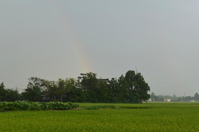 突然の雨 そして虹-3
