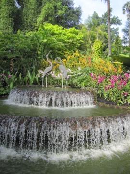 ・園内の噴水